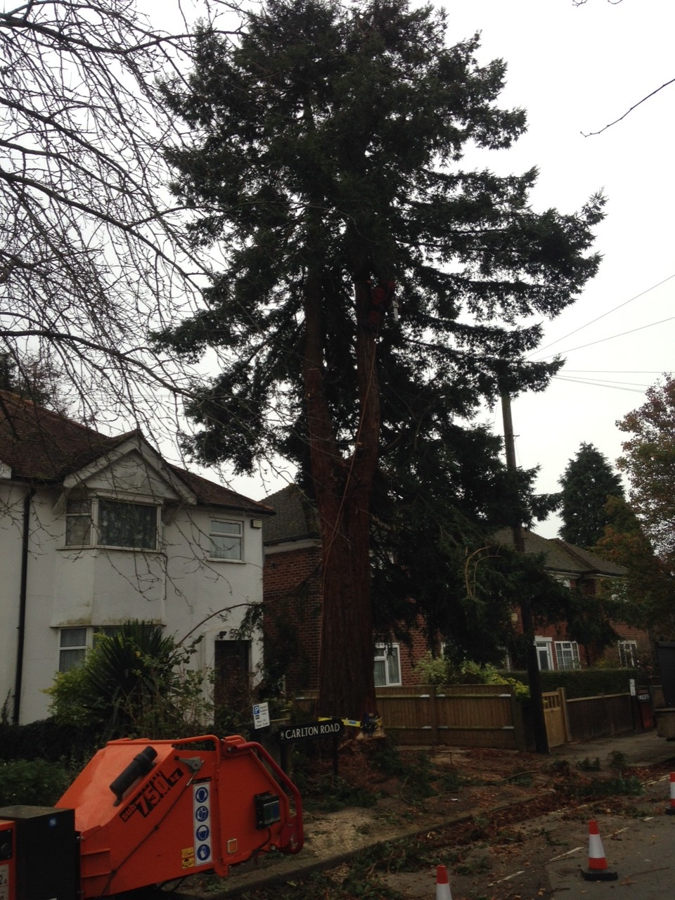 Oxford Oak Tree Surgery